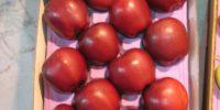 106_0635-RED CAP