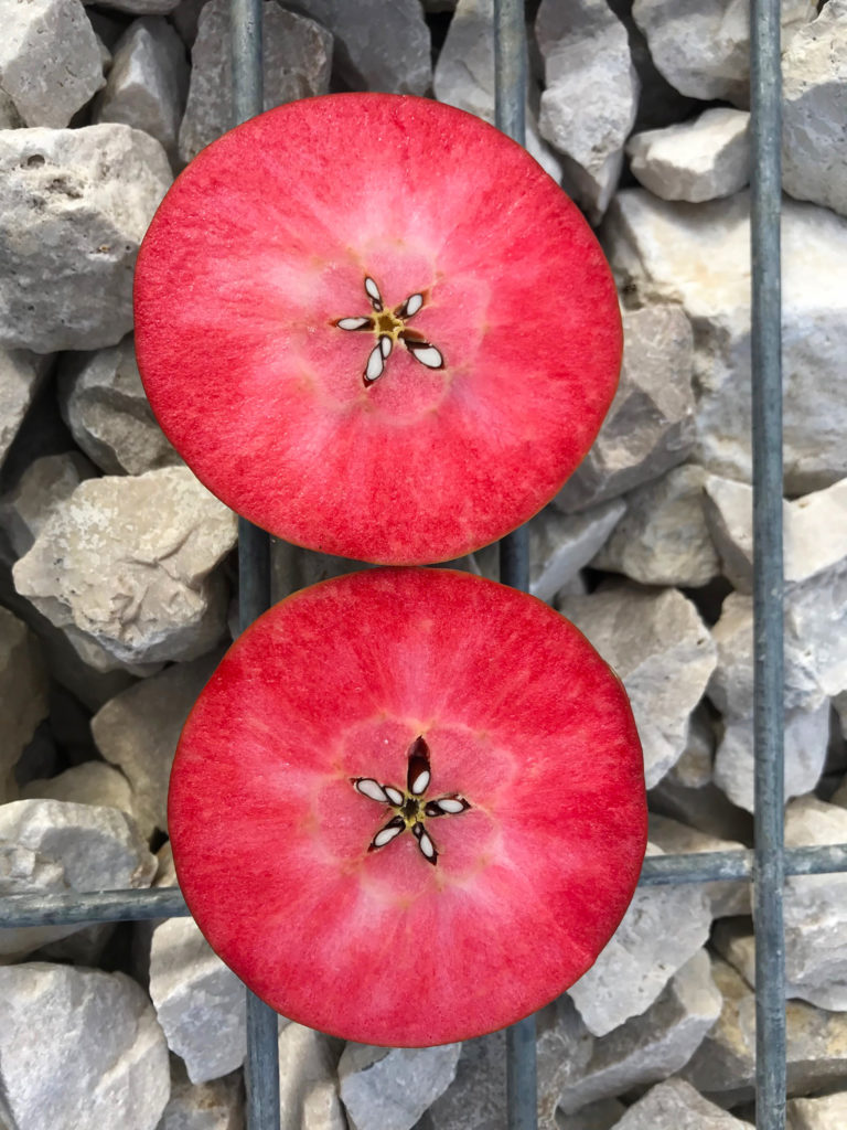 red moon apple - photo #14